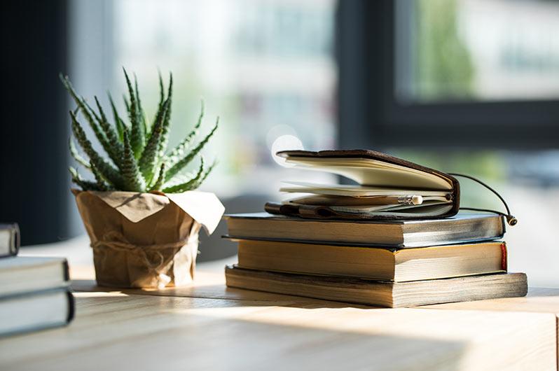 read books by Allan Milham